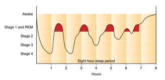 Grafico di sonno Immagine Stock Libera da Diritti