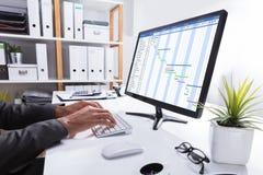 Grafico di Working On Gantt della persona di affari facendo uso del computer immagini stock libere da diritti