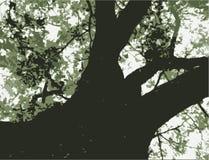 Grafico stampato in neretto dell'albero Fotografia Stock Libera da Diritti