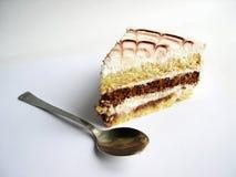Grafico a torta Fotografia Stock Libera da Diritti