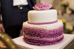 Grafico a torta 8 di cerimonia nuziale Fotografia Stock Libera da Diritti