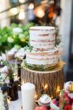 Grafico a torta 8 di cerimonia nuziale Immagine Stock Libera da Diritti
