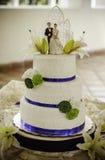 Grafico a torta 8 di cerimonia nuziale Immagini Stock