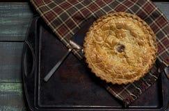 Grafico a torta di mela cotto fresco Fotografie Stock Libere da Diritti