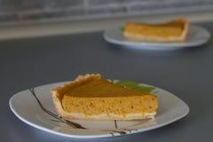 Grafico a torta di zucca tradizionale fotografia stock