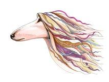 Graficzna pióro kropki ilustracja Zwierzęca ` s głowa Fotografia Stock