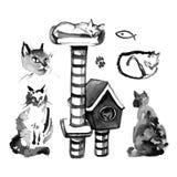 Graficzny set ręcznie malowany atramentów koty odizolowywający na białym tle Obrazy Stock