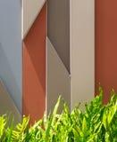 Graficzny tło z Paprociowymi liśćmi Fotografia Stock