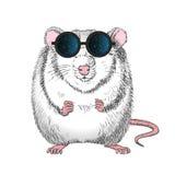 Grafiek van een witte rat in de glazen met de bezinning van buitenhemel royalty-vrije illustratie