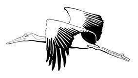 Grafik des weißen Storchs Stockfotos