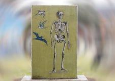 Grafika w sztuka parku, Głęboki Ellum, Dallas, Teksas Obraz Royalty Free