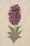 grafika wykładać marmurem papierowy turkish obrazy royalty free