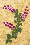 grafika wykładać marmurem papierowy turkish Obrazy Stock