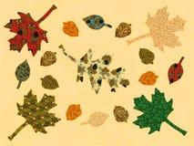 grafiki jesień liść oryginalni Zdjęcie Royalty Free