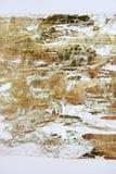 grafiki koloru złoty papier Zdjęcia Stock