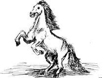 Grafisch grootgebracht paard royalty-vrije illustratie