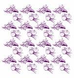 Grafisch Muster von Zwiebeln Stockfoto