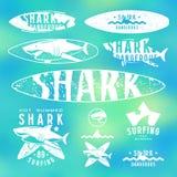 Grafisch ontwerp met het beeld van haai voor surfplank en t-shirt Stock Afbeeldingen