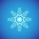 Grafisch sneeuwvlokpictogram Reeks van 16 geïsoleerde elementen op witte achtergrond Royalty-vrije Stock Fotografie