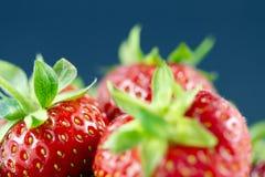 Grafische aardbeien op blauwe achtergrond Stock Afbeeldingen
