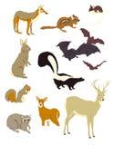 Grafische Beelden van Zoogdieren vector illustratie