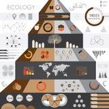 Grafische Ecoinformatie Royalty-vrije Stock Afbeelding