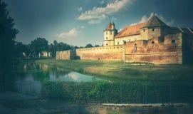 grafische Illustration mit Fagaras-Festung lizenzfreie stockbilder