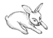 Grafische Kaninchen-Vektorillustration Stockfotografie