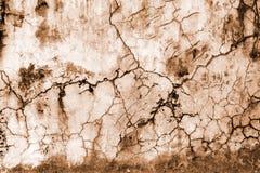 Grafische Muur in Sepia Stock Foto
