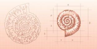 Grafische Nautilus stock illustratie