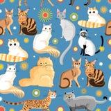Grafische patroon verschillende rassen van katten stock illustratie