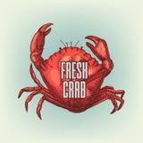 Grafische realistische Krabbe Auch im corel abgehobenen Betrag Stock Abbildung