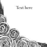 Grafische rozen stock illustratie