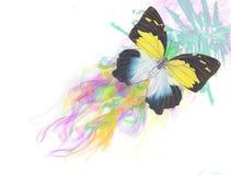 Grafische vlinder Royalty-vrije Stock Afbeelding