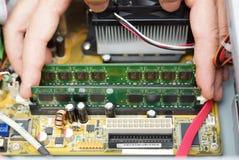 Grafischer Adapter und Schraubendreher getrennt auf Weiß Techniker nimmt Direktzugriffsspeichermodul Stockbilder