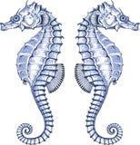 Grafischer Seahorse Stockfoto