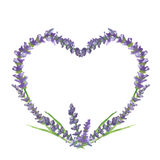 Grafisches Motiv des Lavendelherzens, -Hochzeit oder -Valentinsgrußes, Aquarellmalerei, Illustration Lizenzfreie Stockbilder