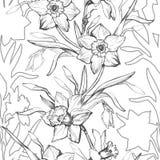 Grafisches nahtloses mit Blumenmuster mit Handgezogenen Blumennarzissen, stockfotografie