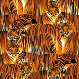 Grafisches nahtloses Muster von stehenden und gehenden Tigern lizenzfreie abbildung