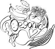 Grafisches skandinavisches Muster des organischen Gemüses: Kartoffel, Tomate, Rote-Bete-Wurzel, Schalotte, Aubergine, Mais vektor abbildung