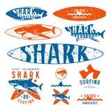 Grafisk design med bilden av hajen för surfingbräda och t-skjorta Royaltyfri Foto