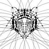 Grafisk illustration med tigern Fotografering för Bildbyråer