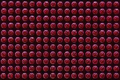 Grafisk modell för CPU-anslutningsben Royaltyfri Fotografi