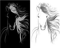 Grafisk teckning för hästhuvud vektor illustrationer