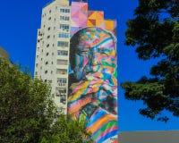 Grafite niemayer royaltyfri fotografi