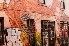 grafitti Arkivfoton
