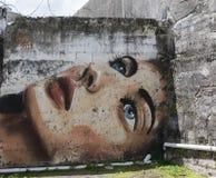 Grafitti av den blått synade kvinnaframsidan Arkivbilder
