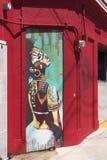 Grafitti av den mång- kulöra afrikanska kvinnan Arkivfoton