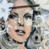 Grafitti - gatakonst Royaltyfri Fotografi