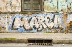 Grafitti och avrinning Royaltyfria Bilder